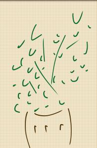 wingi